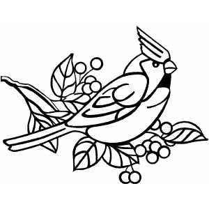 Angry Cardinal Bird Coloring Page