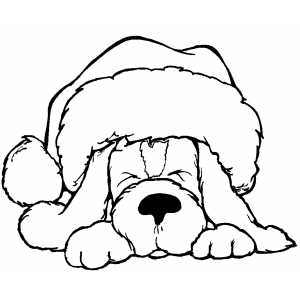 sleeping dog in santa hat coloring page