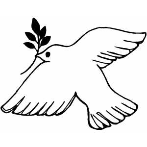 Dove With Branch coloring page